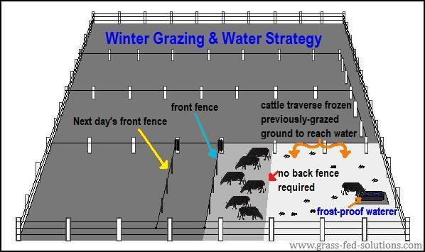 Winterized livestock water and electric fencing system