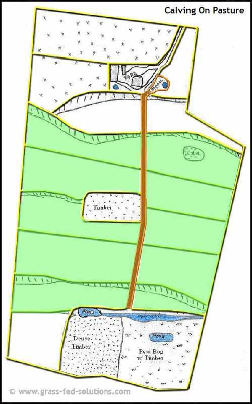 Example Farm Plan: pasture calving