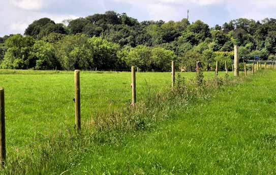 Electric fence installation construction tips for Fence installation tips