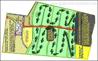 Example Grass-Fed Pasture Rotation and Farm Plan