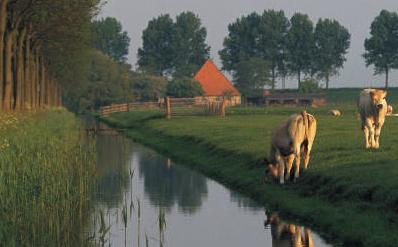 Livestock Water Solutions