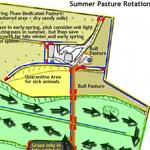 Summer Grazing Plan
