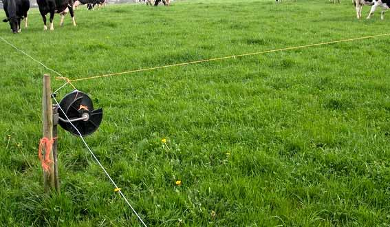 Portable Electric Fence Planning