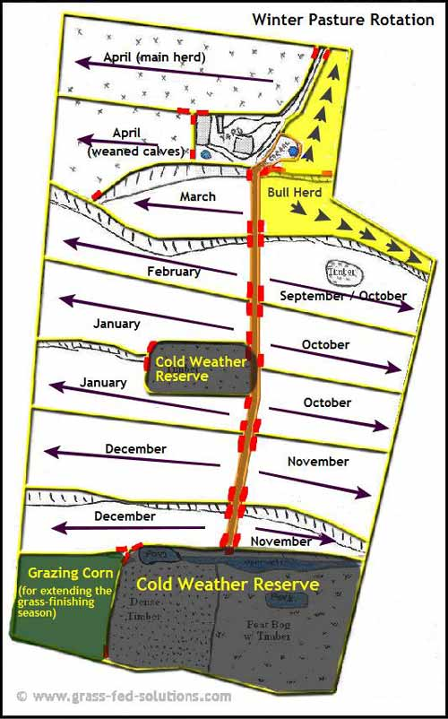 Example Farm Plan: winter pasture rotation