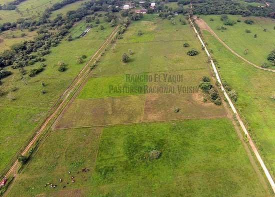 Rancho El Yaqui - potreros