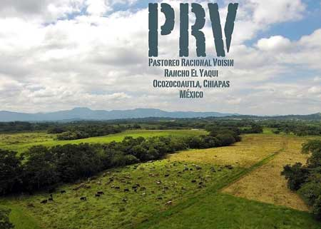 Pastoreo Racional Voisin - Entrevista con Daniel Suárez
