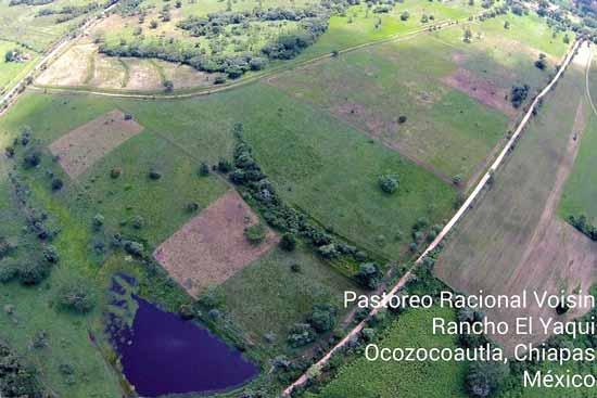 Rancho El Yaqui - pastures