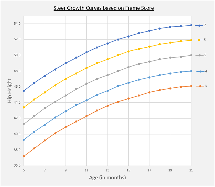 Cattle Growth Curves