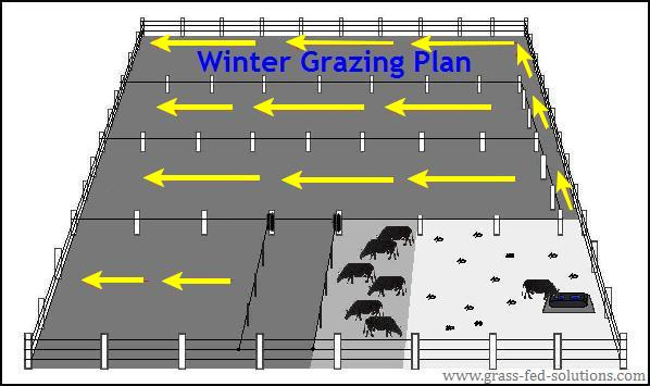 Winter electric fencing plan