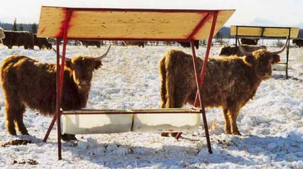 Mobile Mineral Feeder In The Winter Pasture