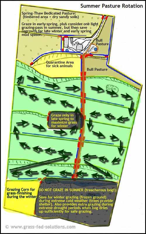 Example Farm Plan: summer grazing plan