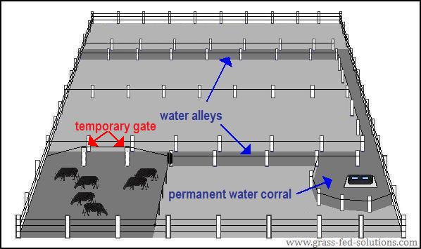 Electric fencing, temporary cattle gates, and cattle water alleys.