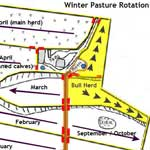 Winter Grazing Plan